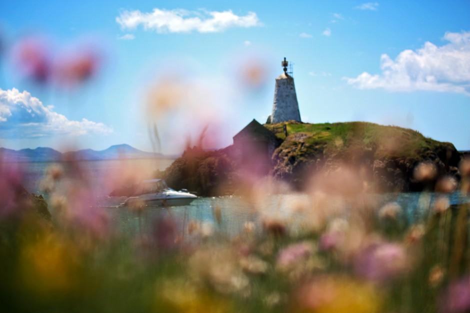 Macro Ynys Llanddwyn