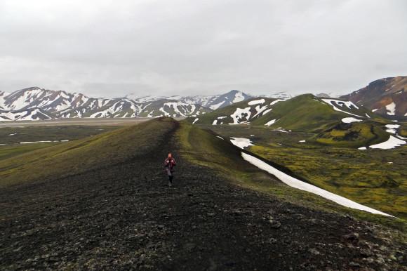 Iest along the ridge